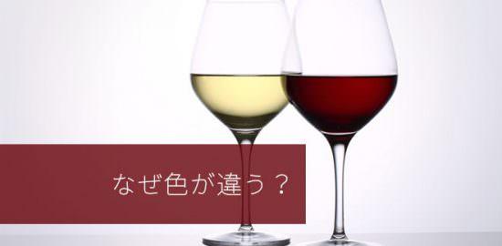 赤ワインと白ワイン、なぜ色が違う?