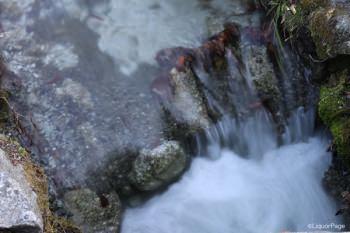 白州蒸留所ないを流れる小川