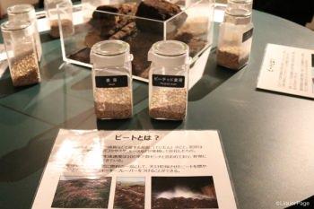 麦芽見学ではピートを使用した麦芽とそうでない麦芽の香りをチェックできる