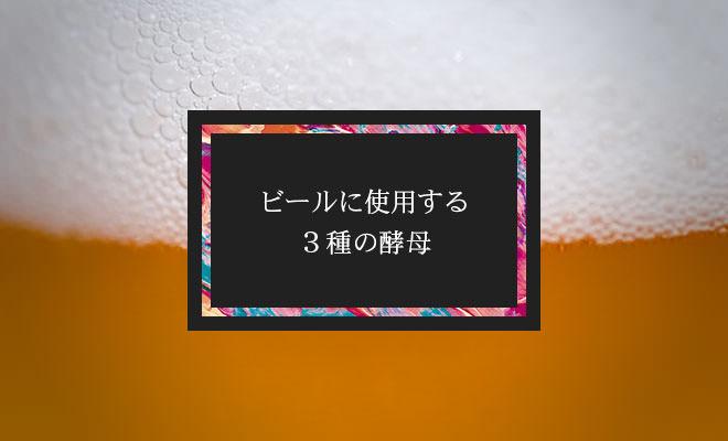 ビールに使用される3種の酵母