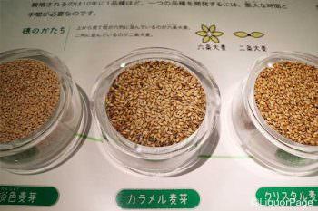 淡色麦芽、カラメル麦芽、クリスタル麦芽
