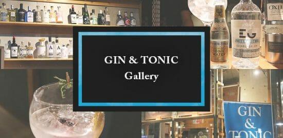 クラフト・ジントニックの専門店「Global GIN & TONIC Gallery」が面白い!