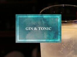 ジン・トニックをもっと美味しく飲むために知っておきたい4つのこと