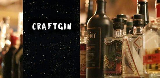クラフトジンとは?特徴〜飲み方までお酒初心者でも分かるように解説してみた