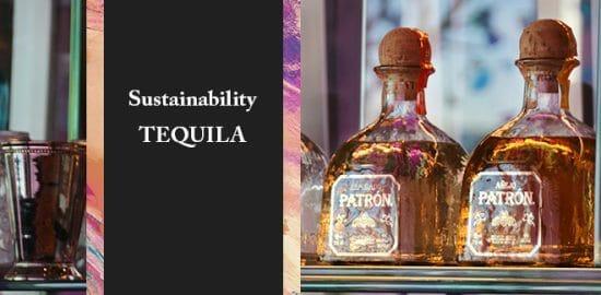セレブに愛されるテキーラ「パトロン」はサスティナビリティを大切にしていた