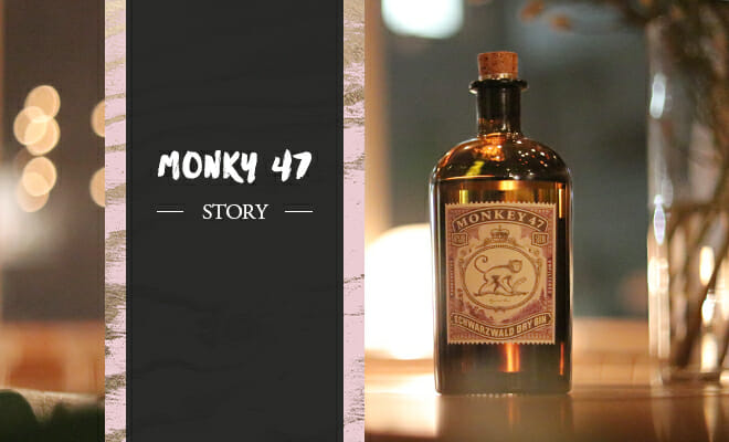 """徹底解剖!森に眠るレシピを復活させた""""香水のような""""ジン「モンキー47」"""