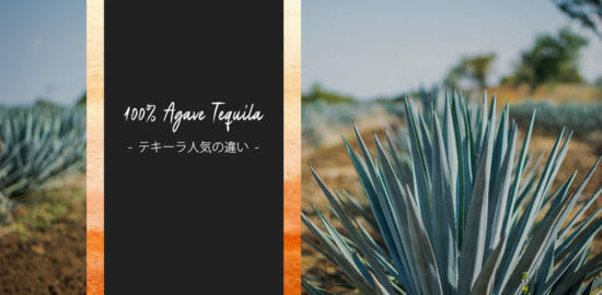 世界では「100%アガベテキーラ」が人気?日本とは違う世界のテキーラ事情