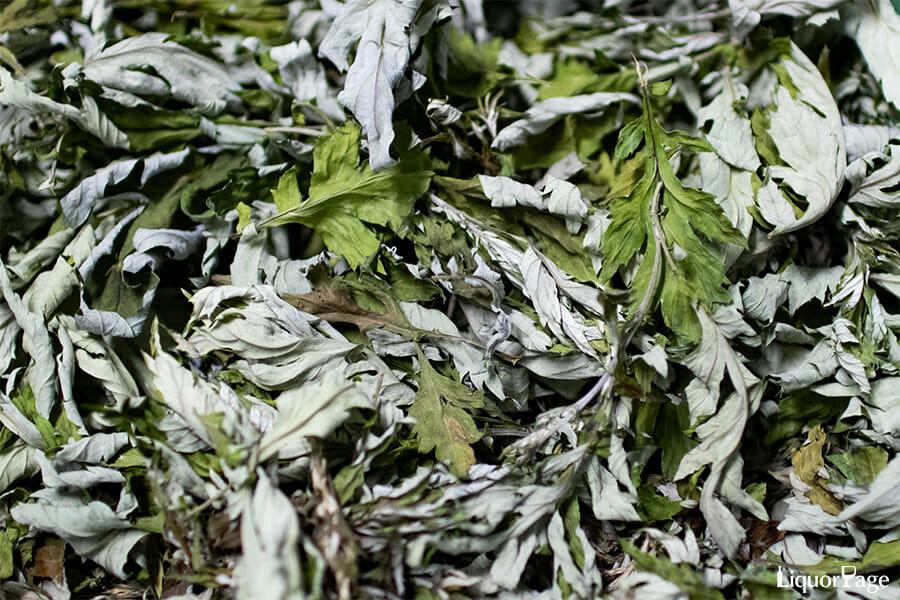 越後薬草の製品の軸となるのはヨモギ